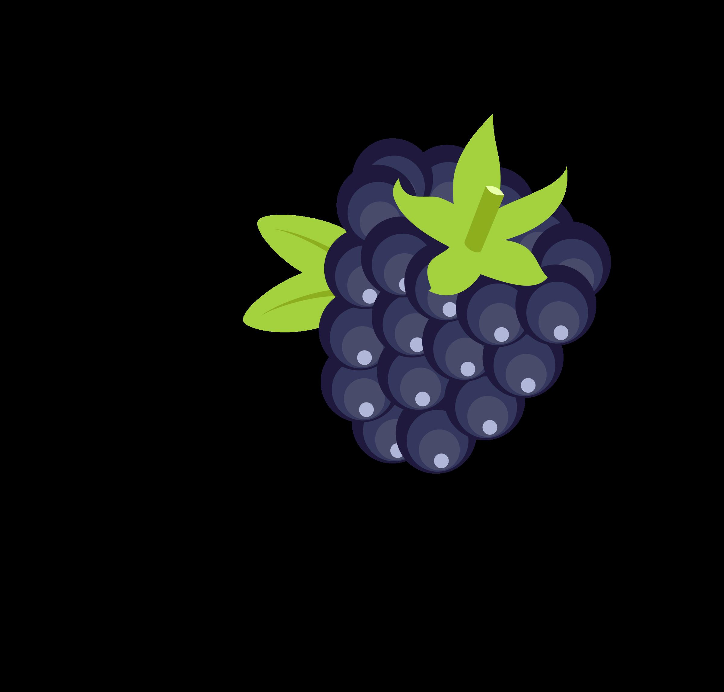 2400x2292 Blackberry Vector Clipart Image