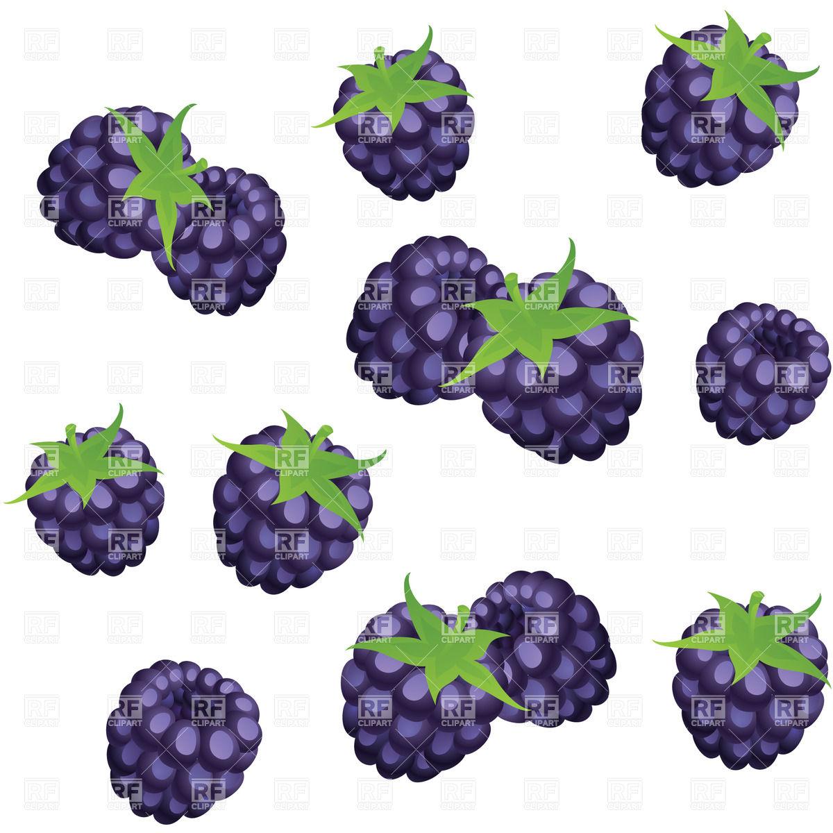 1200x1200 Cartoon Blackberries Vector Image Vector Artwork Of Food And