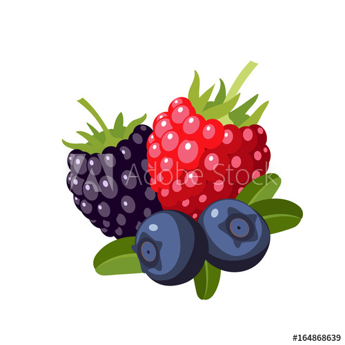 500x500 Set Of Colorful Cartoon Berries Raspberry, Blueberry, Blackberry