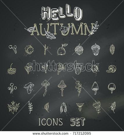 427x470 Rowan Blackboard Vector Chalk Set Of Autumn Icons On Blackboard