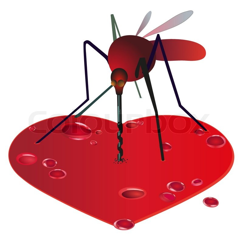 800x800 Mosquito On The Red Bleeding Heart Stock Vector Colourbox