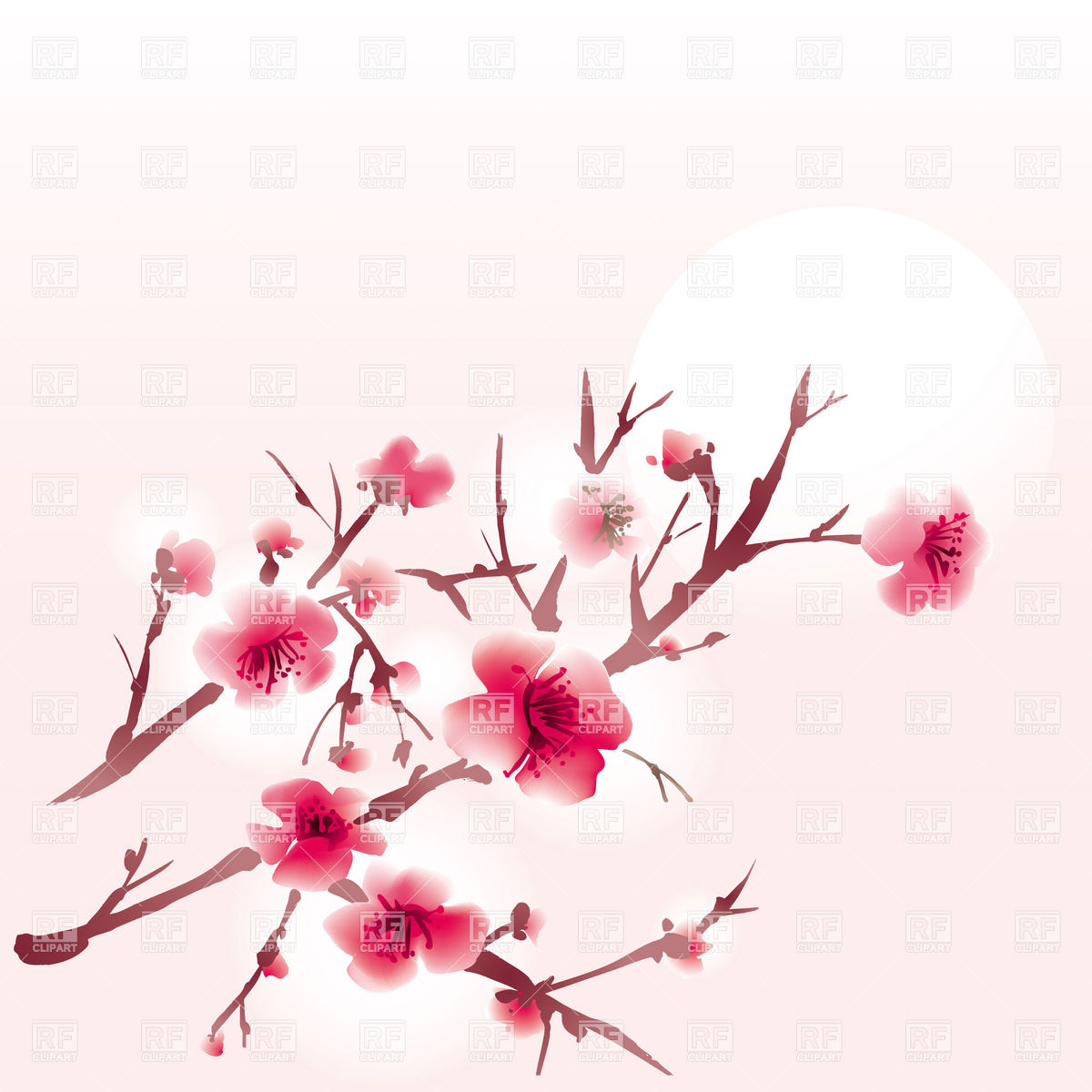1200x1200 Leafless Sacura Branch In Bloom Vector Image Vector Artwork Of