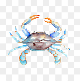 260x261 Blue Crab Png Images Vectors And Psd Files Free Download On