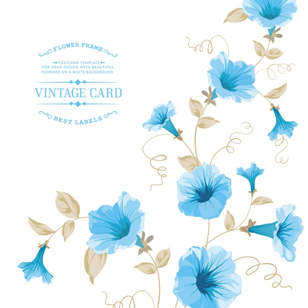 626x626 Template With Blue Flowers Vector Premium Download