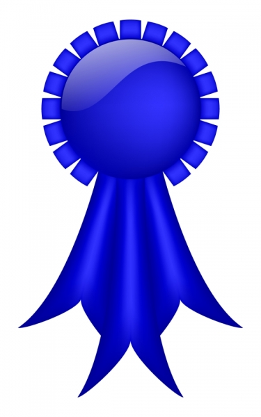 375x600 Blue Ribbon
