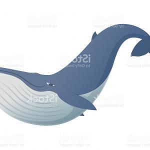 300x300 Cute Funny Blue Whale Gm Sohadacouri
