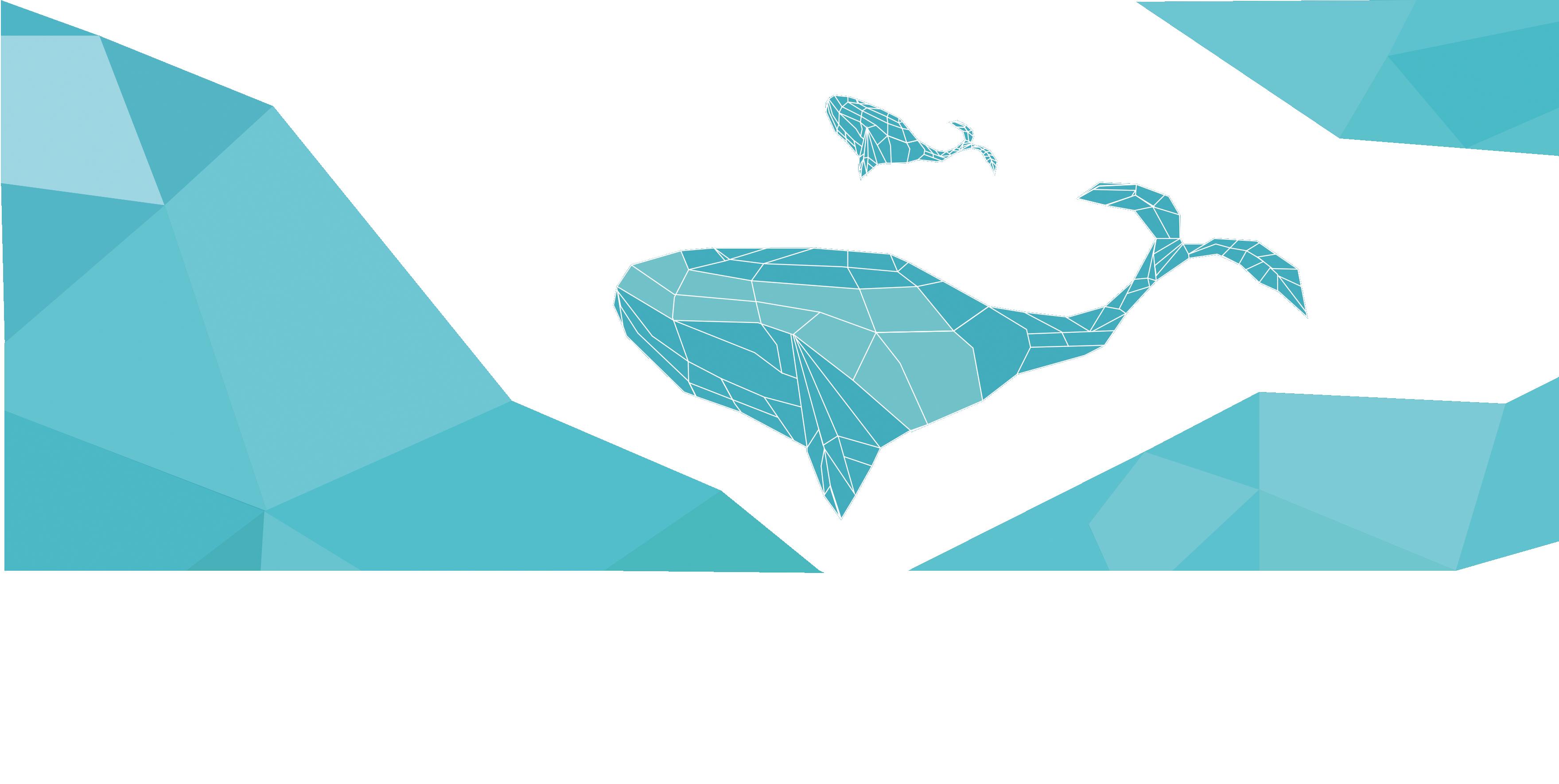 3519x1772 Euclidean Vector Blue Whale