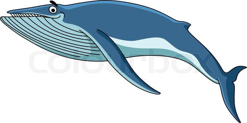 800x399 Big Blue Baleen Whale Swimming Through The Sea, Cartoon
