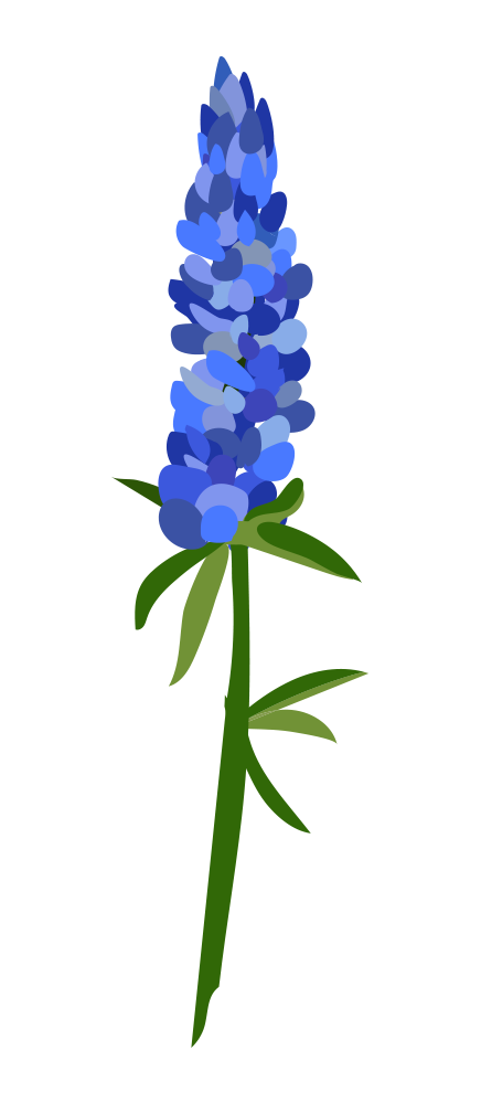 436x1000 Collection Of Free Vector Flower Bluebonnet. Download On Ubisafe