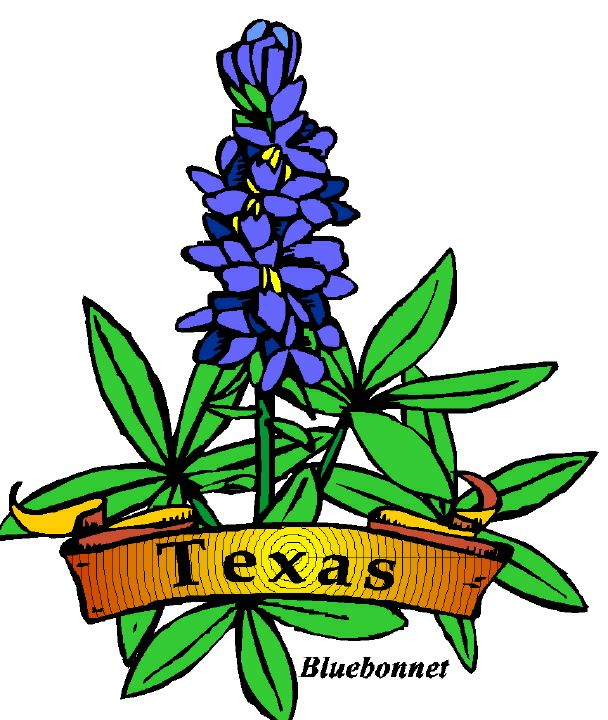 608x720 Texas Clipart Official ~ Frames ~ Illustrations ~ Hd Images