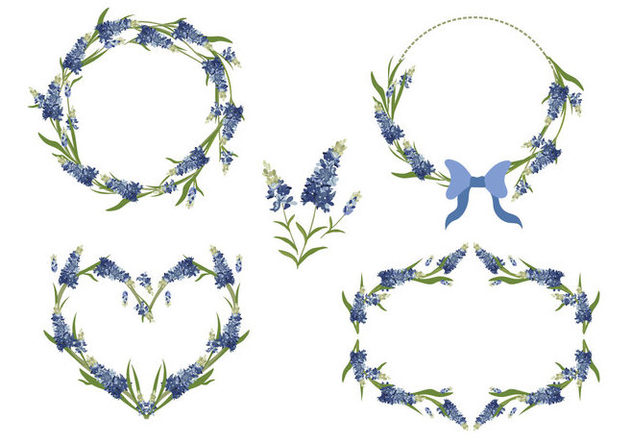 632x443 Bluebonnet Flower Frame Vector Collection Free Vector Download