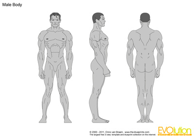 400x283 Male Body Vector Drawing