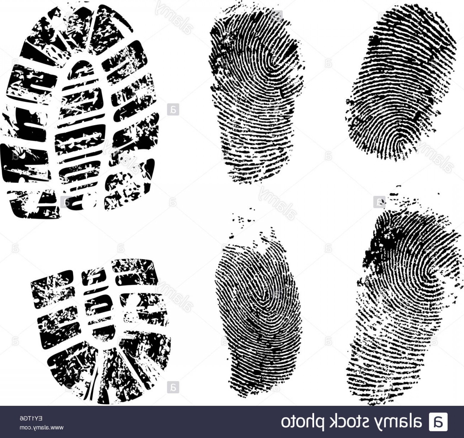 1560x1470 Stock Photo Detailed Finger And Boot Print Vector Illustration