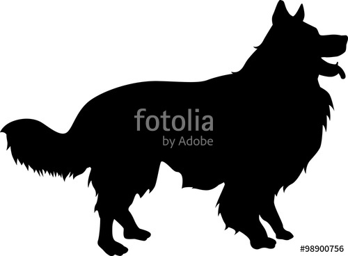 500x368 Border Collie Silhouette Stock Image And Royalty Free Vector