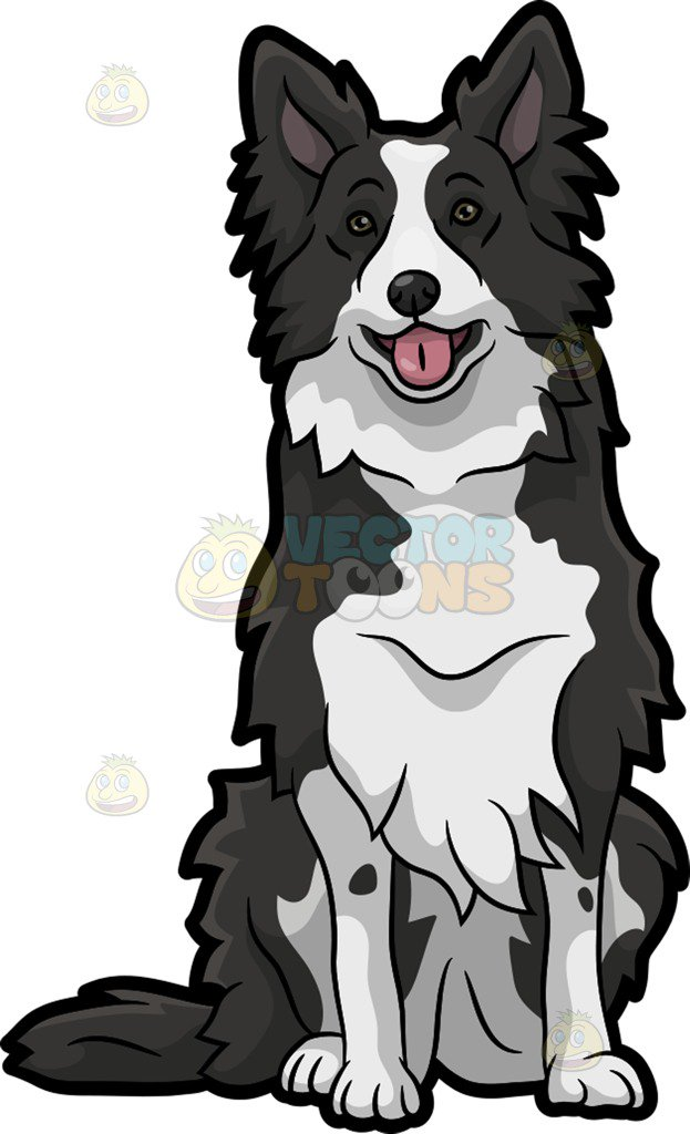 623x1024 A Cute Border Collie Dog Clipart By Vector Toons