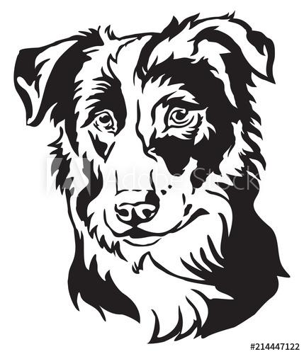 429x500 Decorative Portrait Of Dog Border Collie Vector Illustration