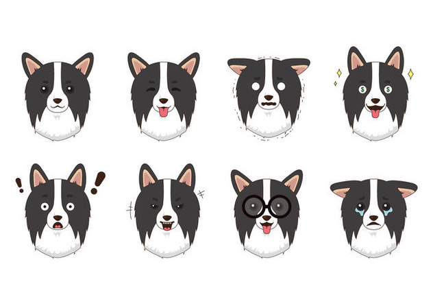 632x443 Free Border Collie Vector Free Vector Download 418737 Cannypic