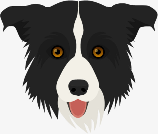 650x549 Border Collie, Hound, Animal, Puppy Png And Vector For Free Download