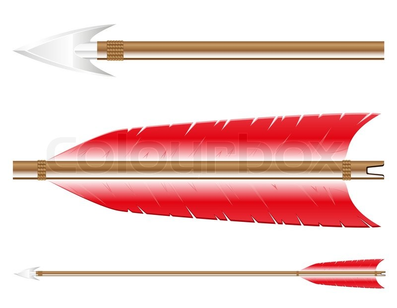800x622 Arrow For Bow Vector Illustration Isolated On White Background