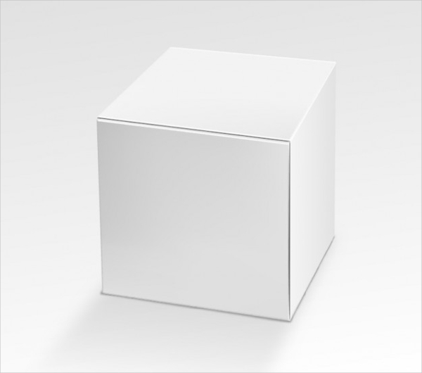 Box Template Vector