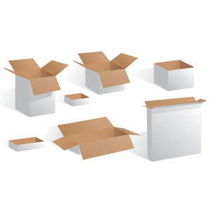 300x300 Blank White Boxes Vector