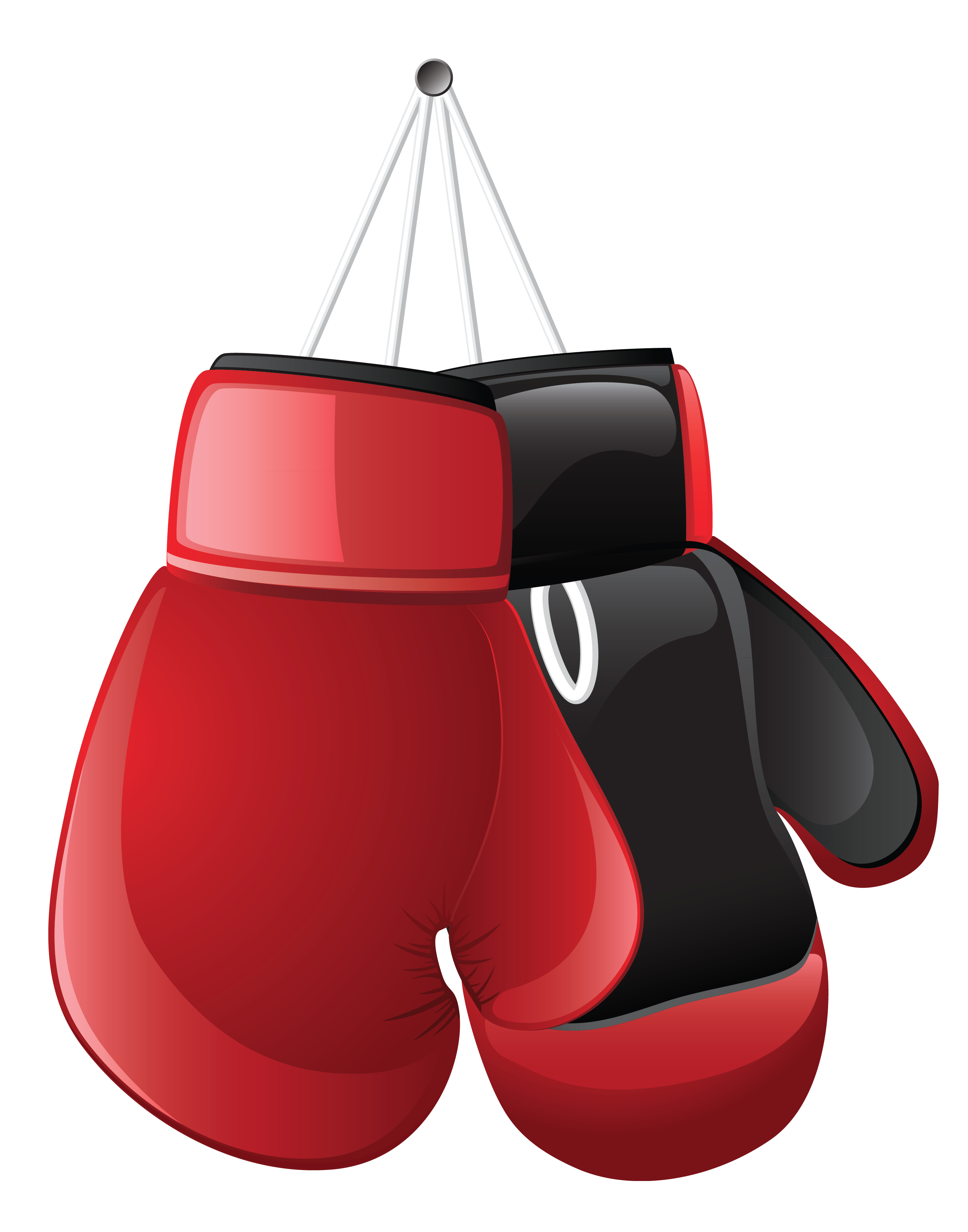 Boxing Gloves Vector at GetDrawings | Free download