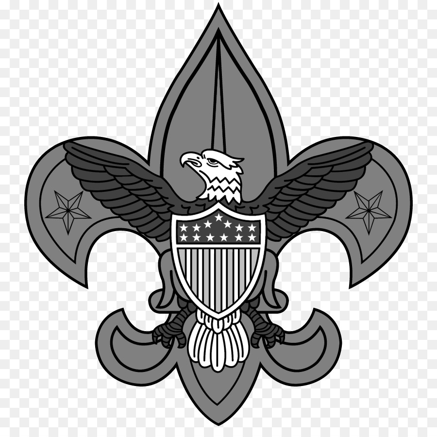 900x900 Boy Scouts Of America Scouting World Scout Emblem Eagle Scout