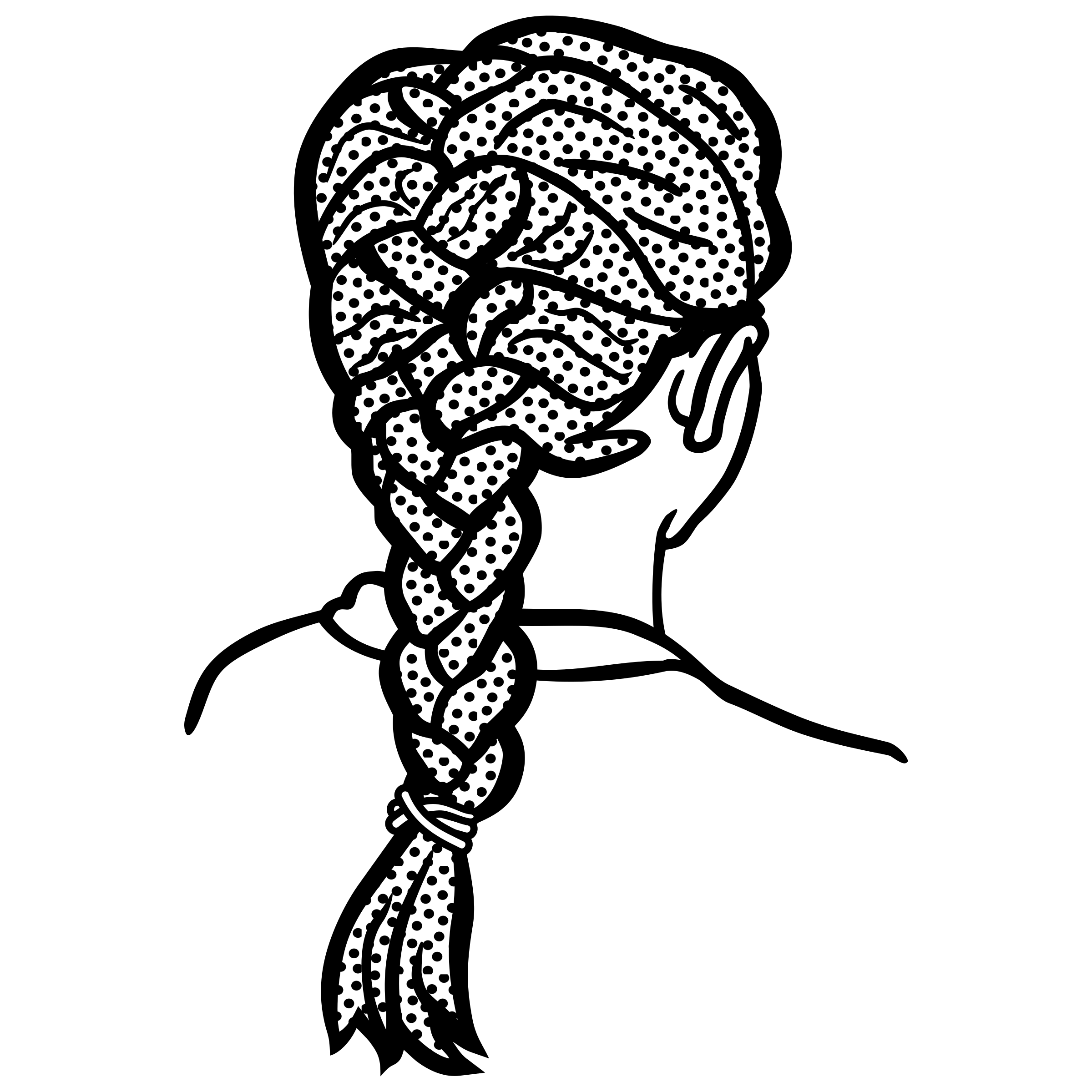 Braid Vector