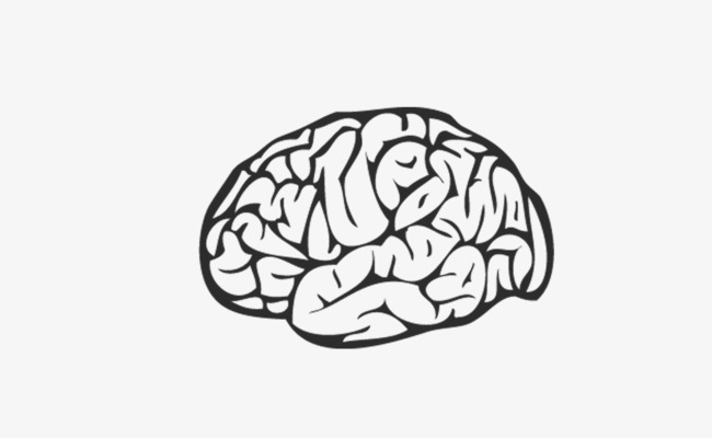 650x400 Black And White Brain Vector, Black And White, Brain, Head Png And