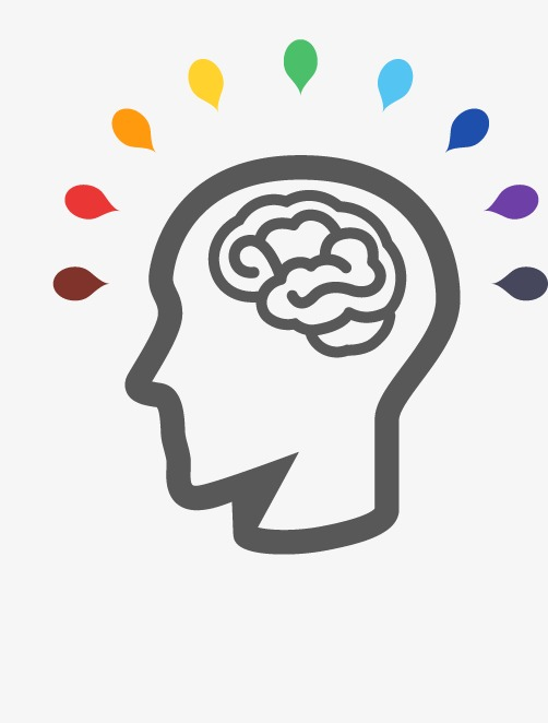 502x662 Brain, Head Portrait, Brain Vector Png And Vector For Free Download