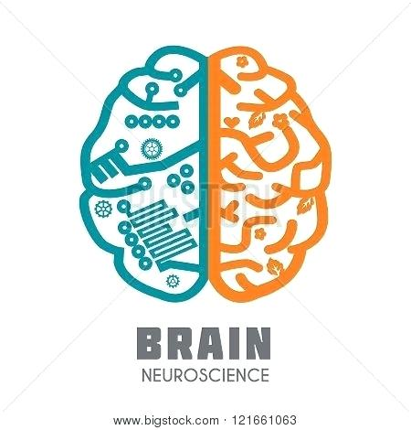 450x470 Glamorous Brain Vector Astonishing Brain Icon Vector Free Download