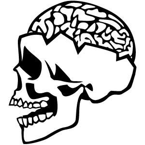 300x300 Brain