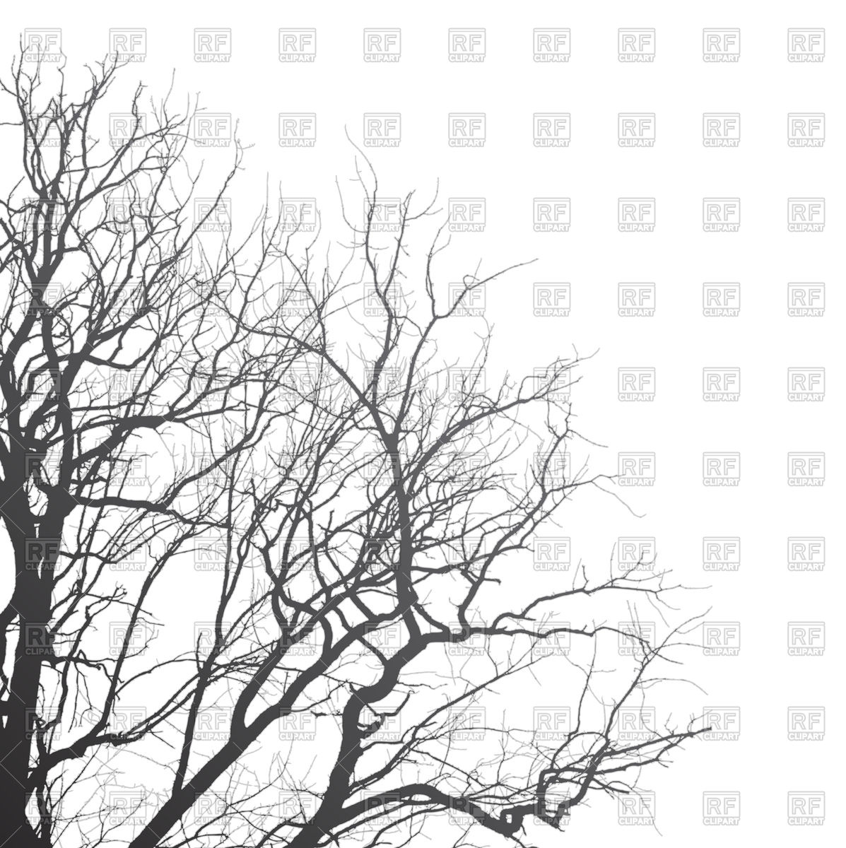 1197x1200 Branches Of Tree On White Background Vector Image Vector Artwork