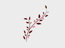 270x200 Free Branch Vector Graphics