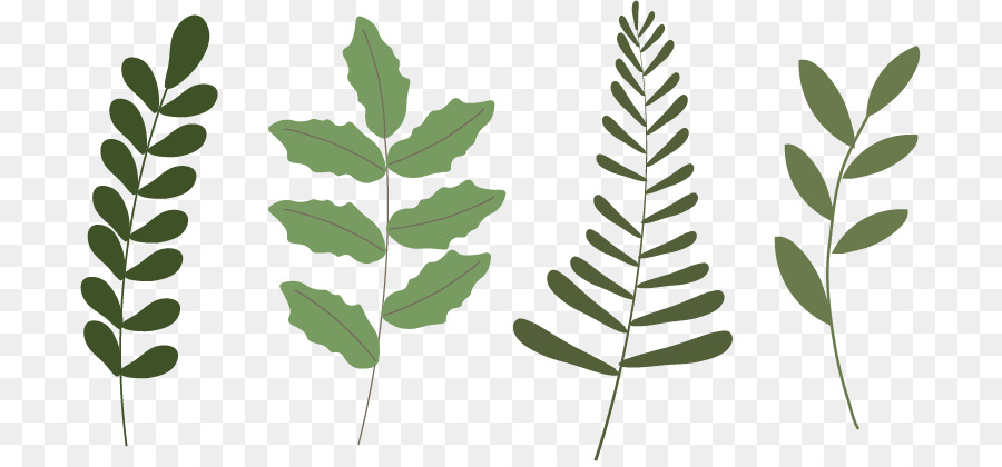 900x420 Leaf Plant Poinsettia