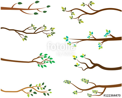 500x400 Vector Set Of Tree Branches With Green Leaves Stock Image And