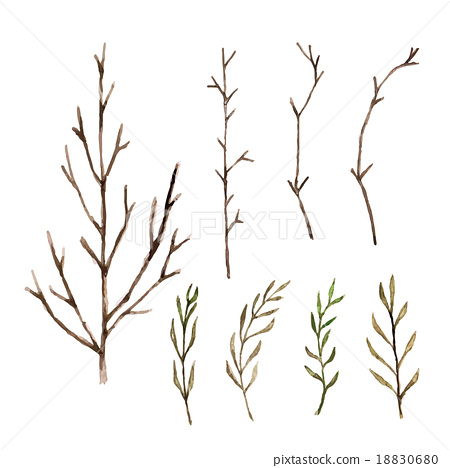 450x468 Watercolor Paint Tree Branch , Vector Isolated