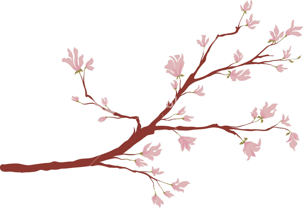 1000x687 Branch Vector Element Royalty Free Stock Image