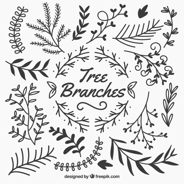 626x626 Branch Vectors, Photos And Psd Files Free Download