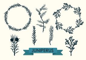 286x200 Branches Free Vector Art