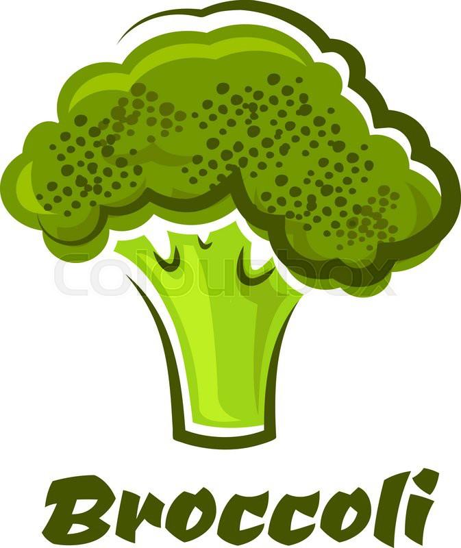 673x800 Cartoon Fresh Green Healthy Broccoli Vegetable With Text Broccoli