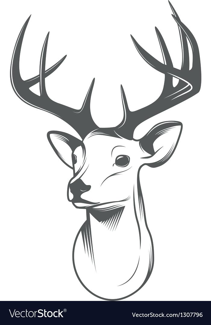 700x1080 Deer Head Images Deer Head Silhouette Vector Image Deer Head