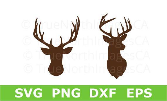 570x344 Deer Head Vector Deer Head Svg Hunting Svg Deer Svg Deer