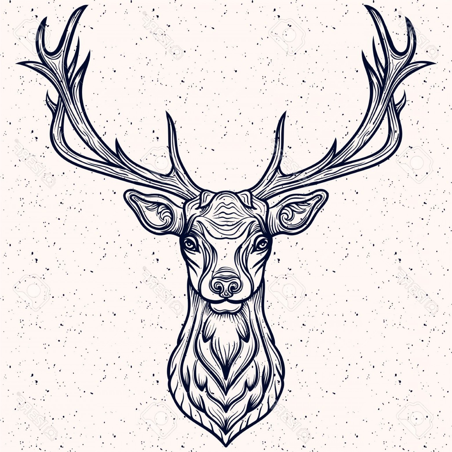 1560x1558 Photostock Vector Vector Illustration Of A Whitetail Deer Head