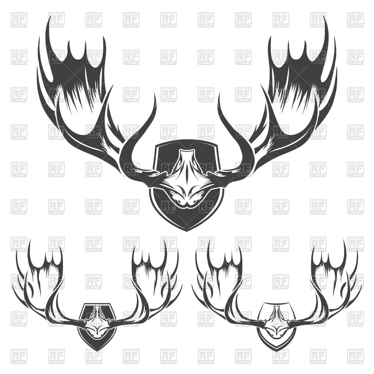 1200x1200 Bull Clipart Elegant Bull Horn Trophy Buffalo Large Horns Royalty