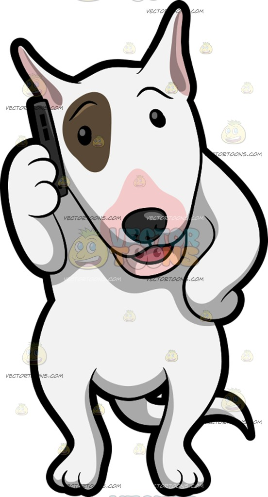 552x1024 A Bull Terrier Using A Cellphone To Call Somebody Clipart By