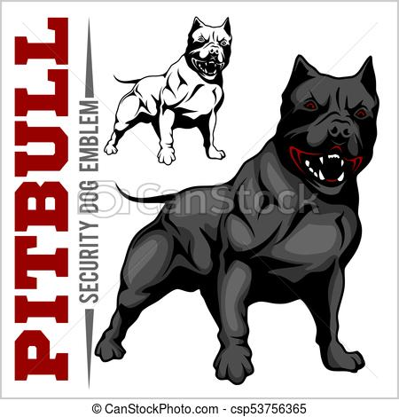 450x470 American Pit Bull Terrier, Pitbull. American Pit Bull Terrier