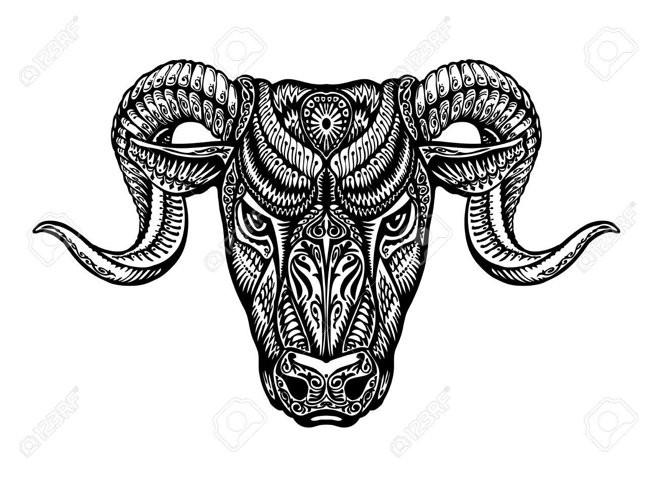 1300x949 Drawn Bull Vector 3271563