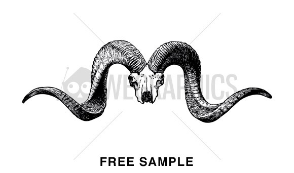 580x342 Free Download Of Bull Vector Graphics And Illustrations