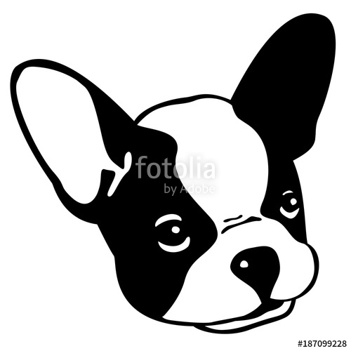 500x500 Dog French Bulldog Vector Icon Head Face Illustration Stock Image